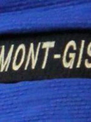 STAGES JCCG RONVAU 2019 - PLUS DEUX MAIS TROIS SEMAINES DE STAGES : AVRIL - JUILLET (NOUVELLE FORMULE) - AOÛT - INFOS & INSCRIPTIONS - C\'EST PARTI!